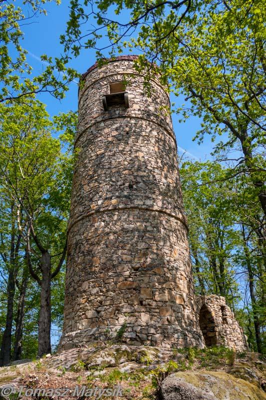 Wieża Widokowa w Bukowiec