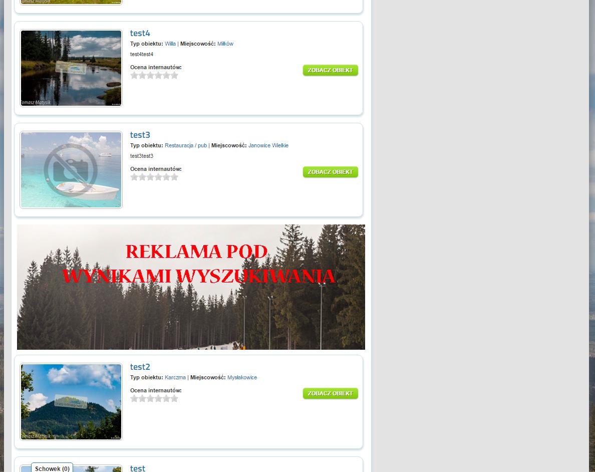 reklama_pomiedzy_wyszukaniami