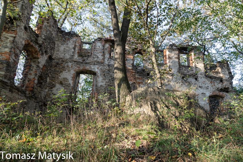Zamek w Rybnicy